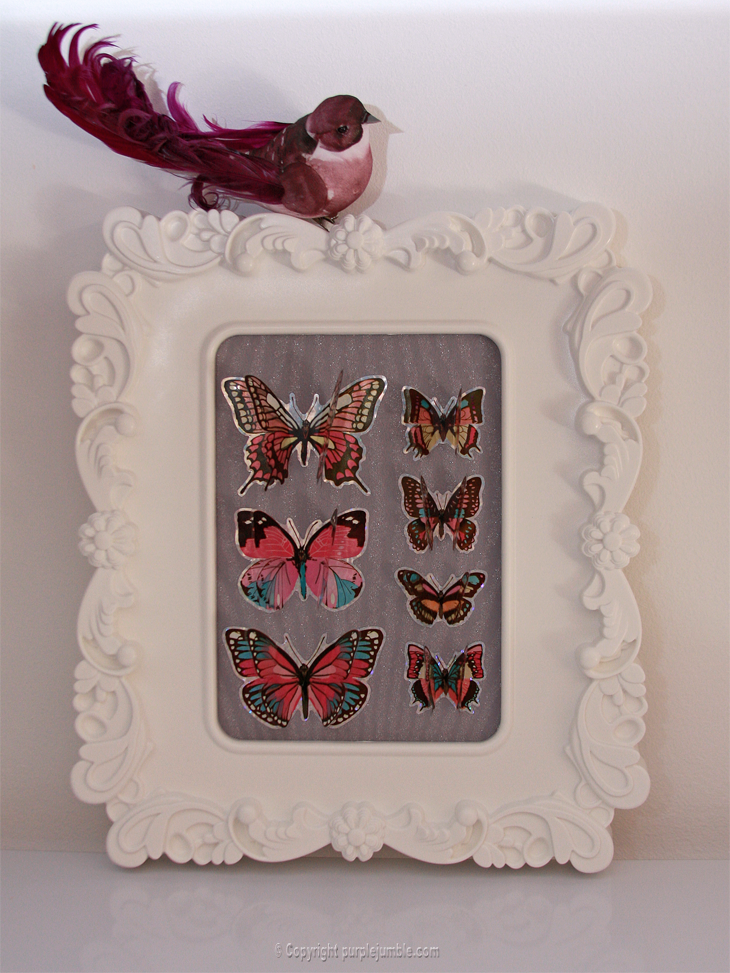 cadre-papillons-9