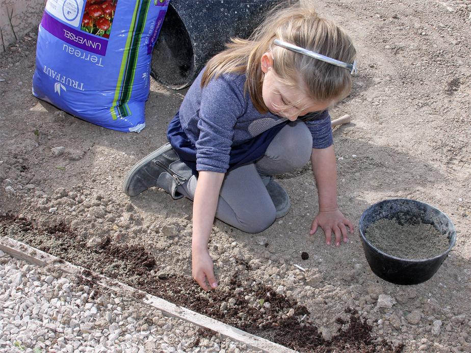 DIY jardin plantes grasses