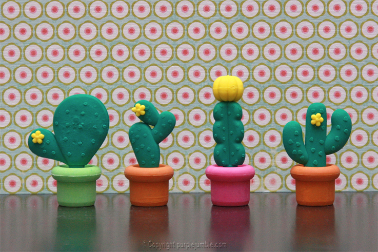 gommes kawai cactus magasin Tiger