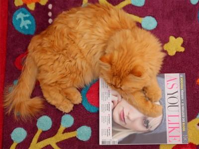 as-you-like-magazine