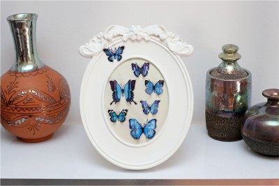 cadre-papillons-7