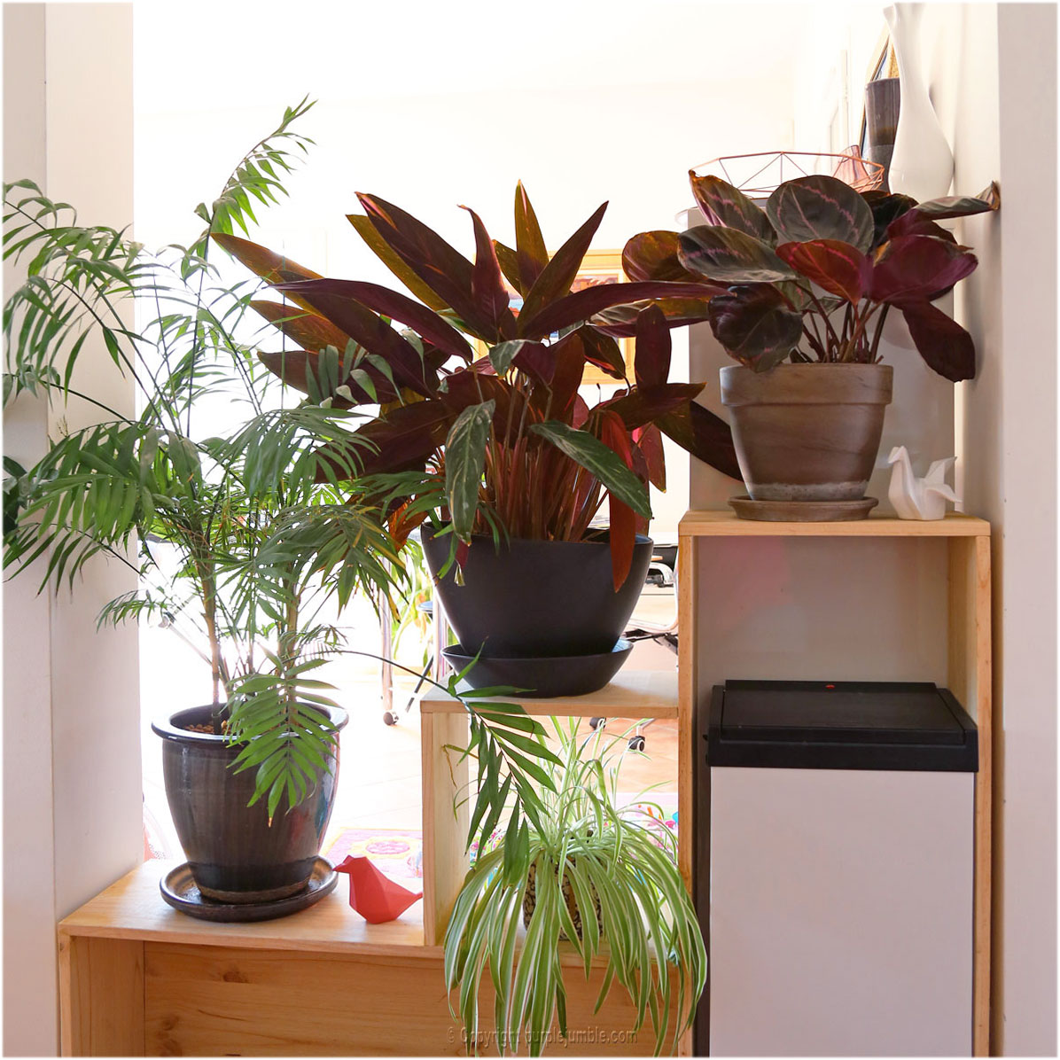 diy une tag re en bois sur mesure pour mes plantes. Black Bedroom Furniture Sets. Home Design Ideas