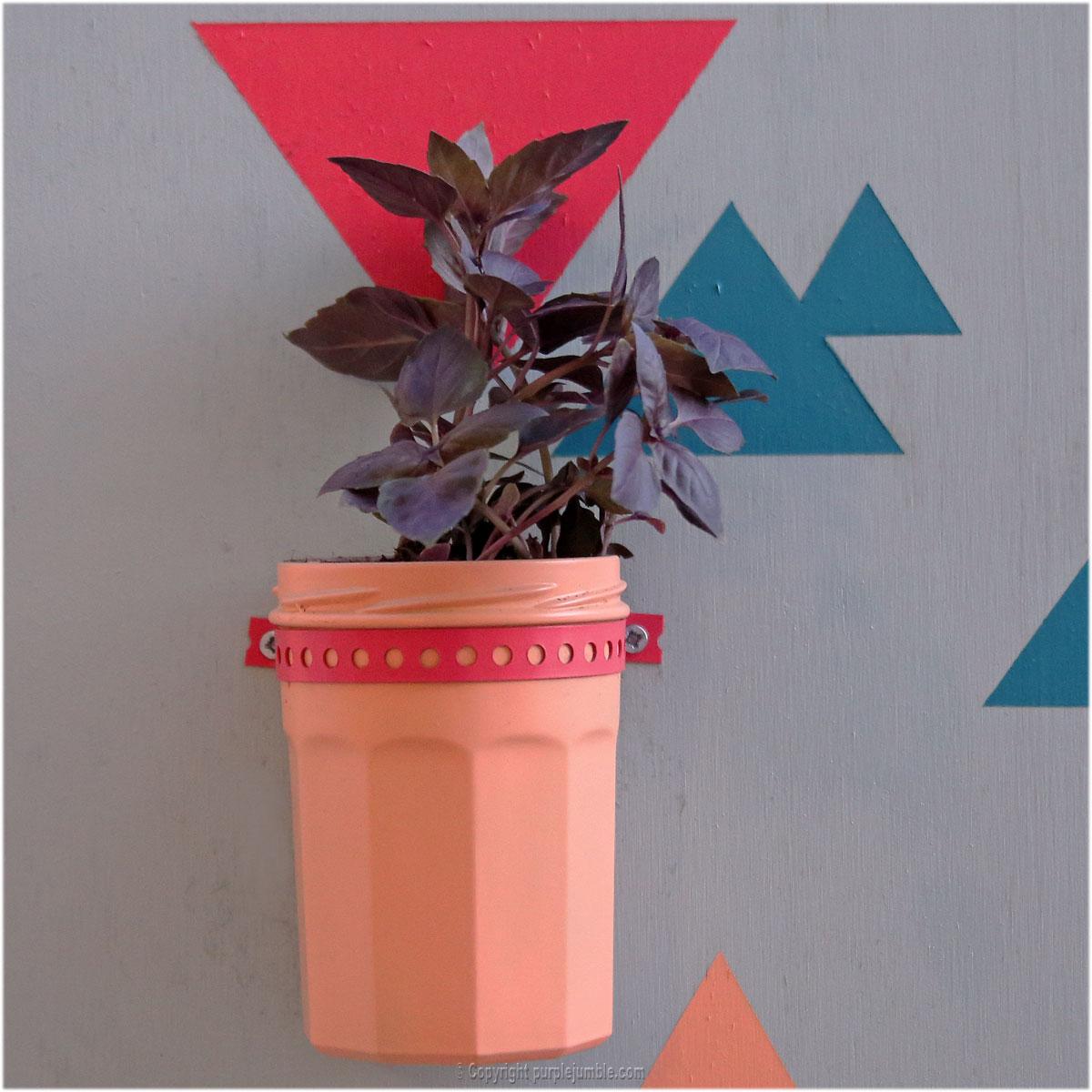 DIY cadre plantes aromatiques décoration murale