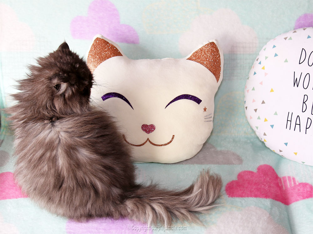 diy coussin chat kawaii chat