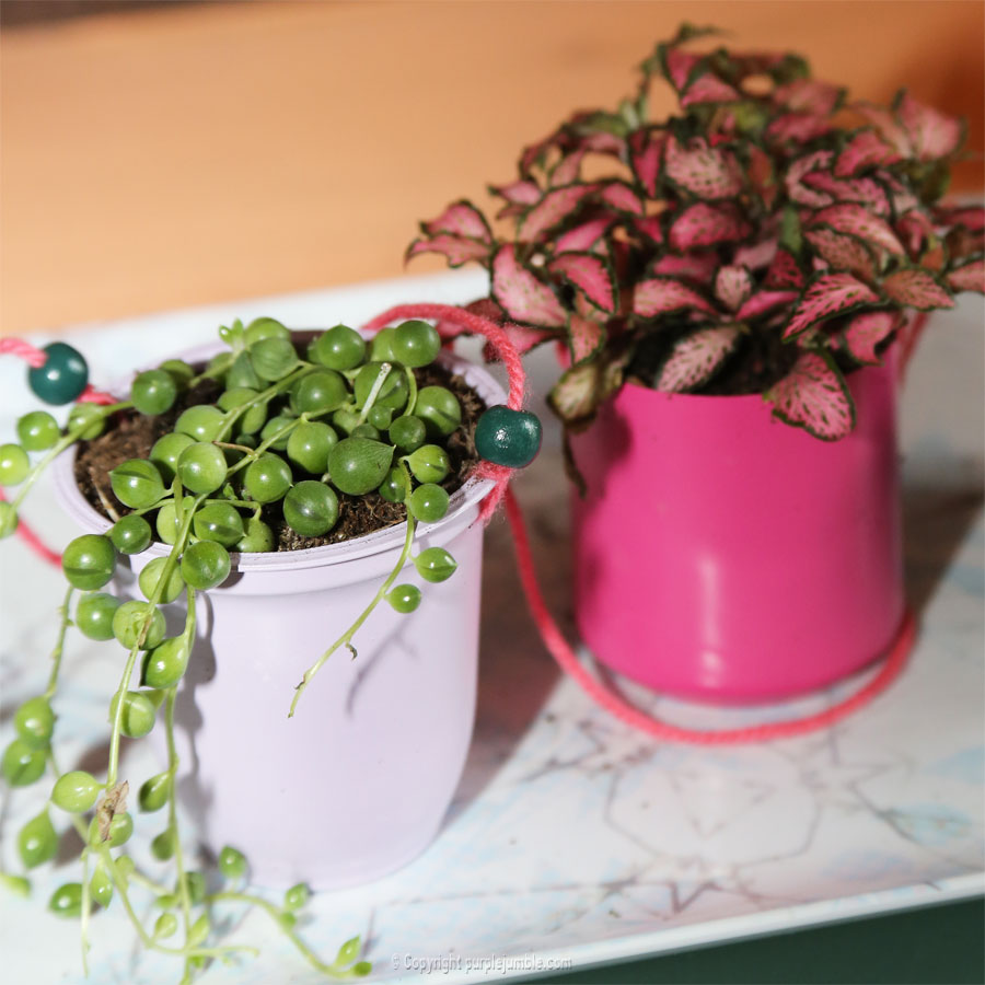 diy green upcycle jardin suspendu