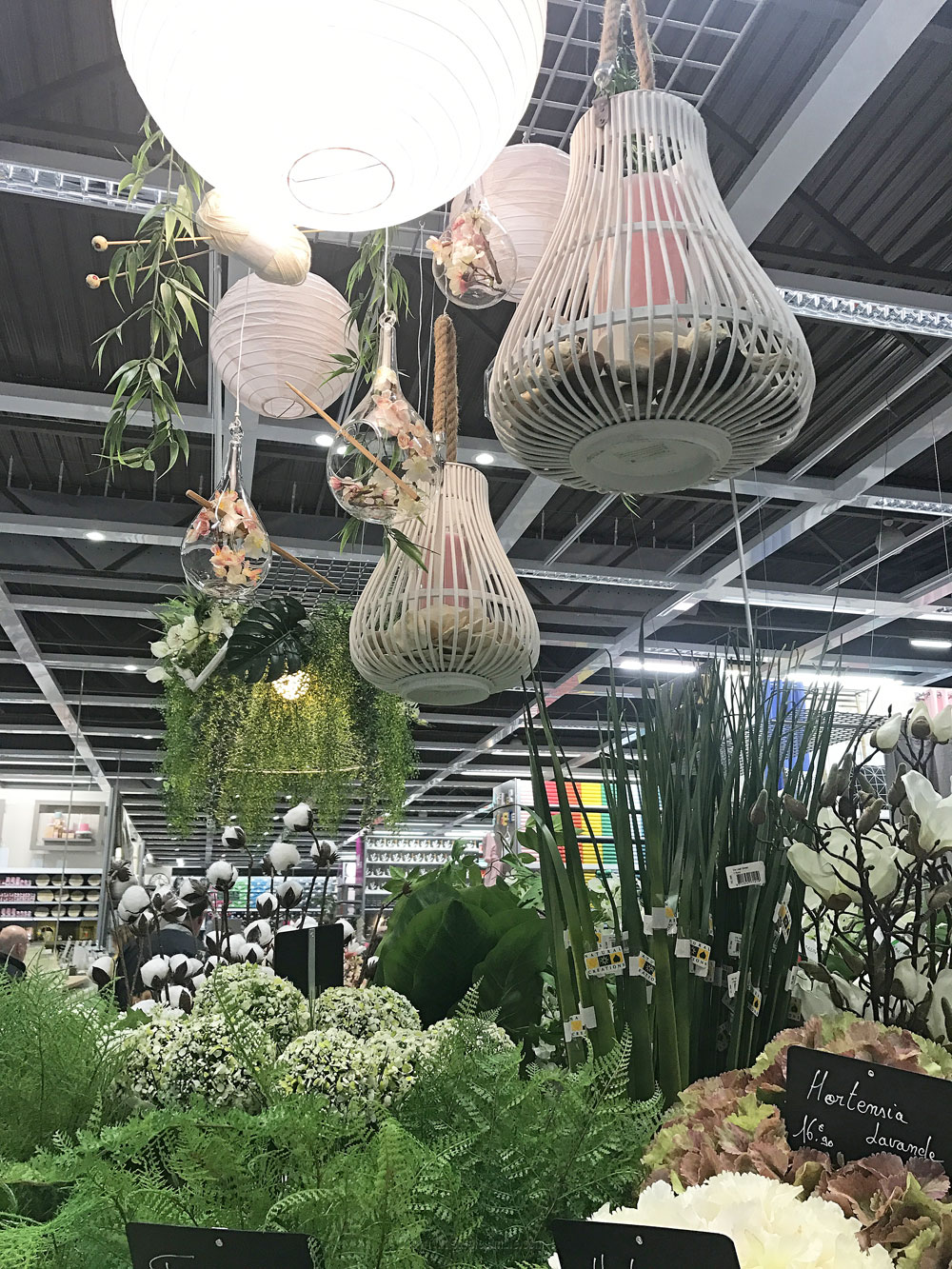 magasin zodio décoration plantes