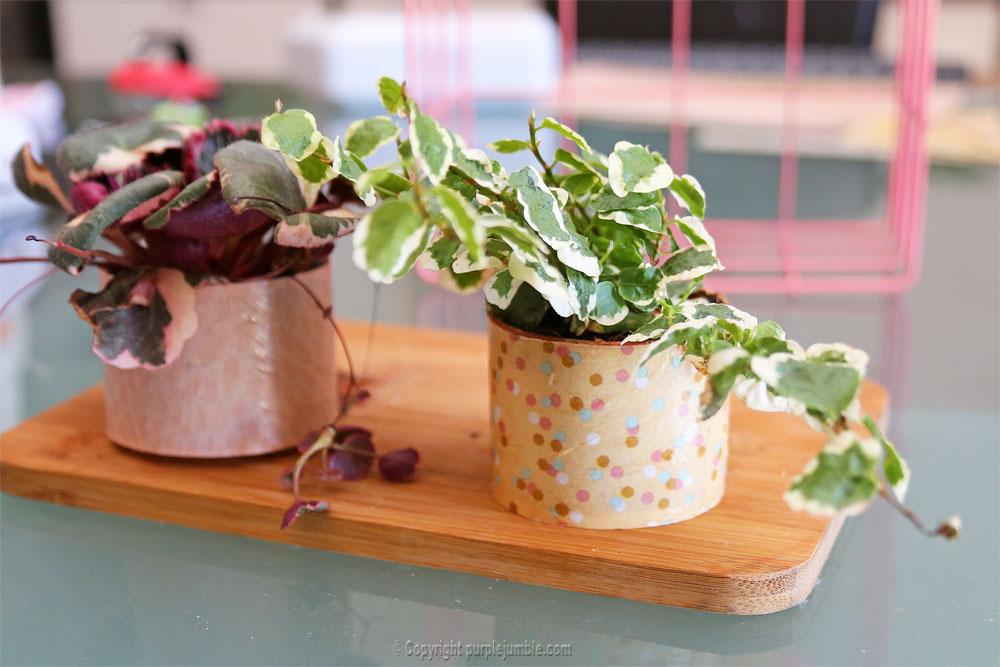 diy pots plantes guirlande