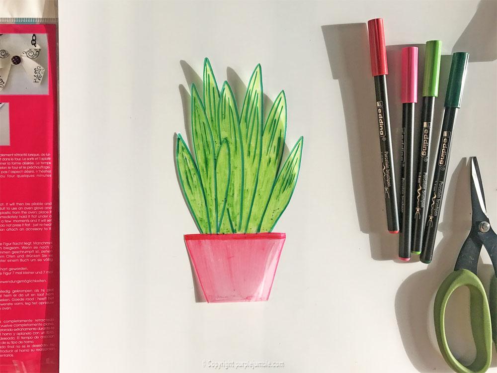 diy cadre cactus plastique dingue troisième