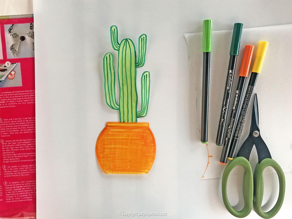 diy cadre cactus plastique dingue quatrième