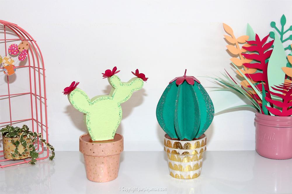 diy cactus carton creavea étagère
