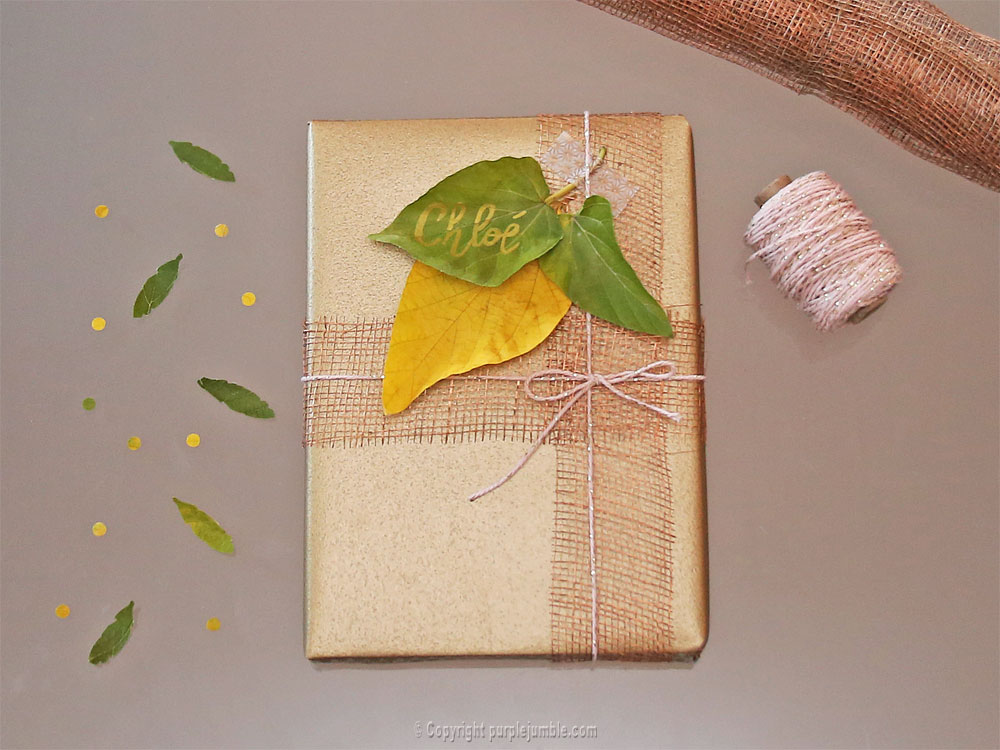 diy-paquet-cadeau-nature-11