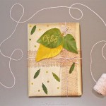 diy-paquet-cadeau-nature-13