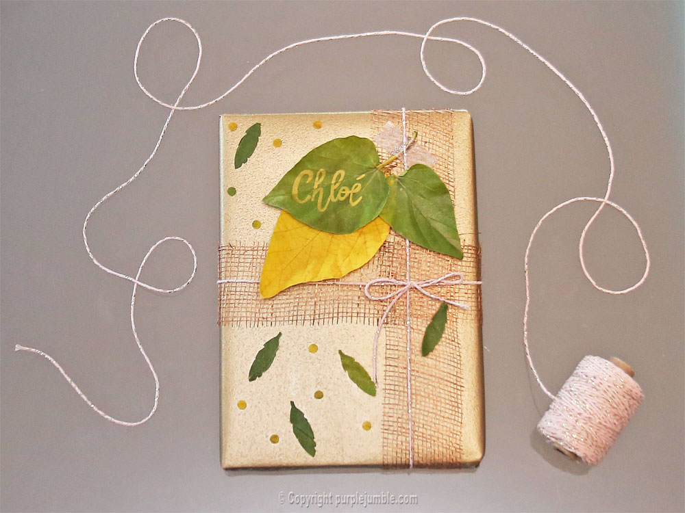 diy-paquet-cadeau-nature-13
