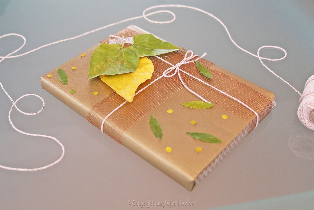 diy-paquet-cadeau-nature-15