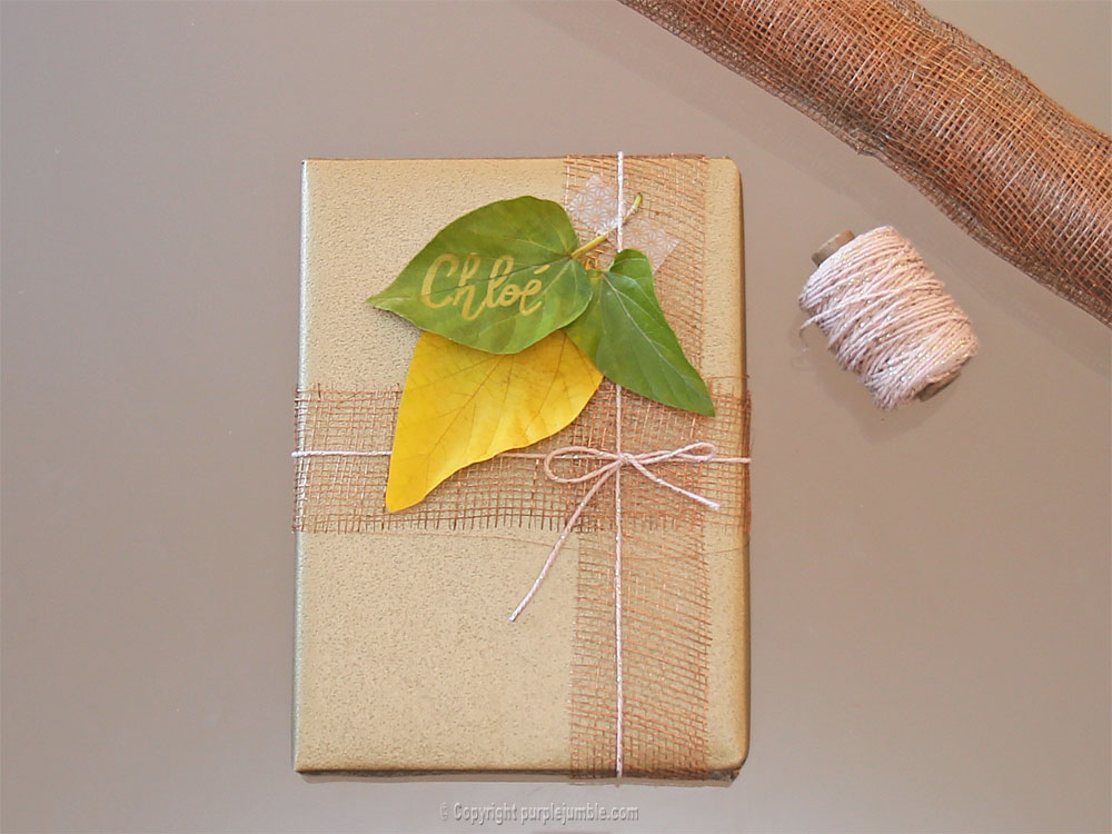 diy-paquet-cadeau-nature-9