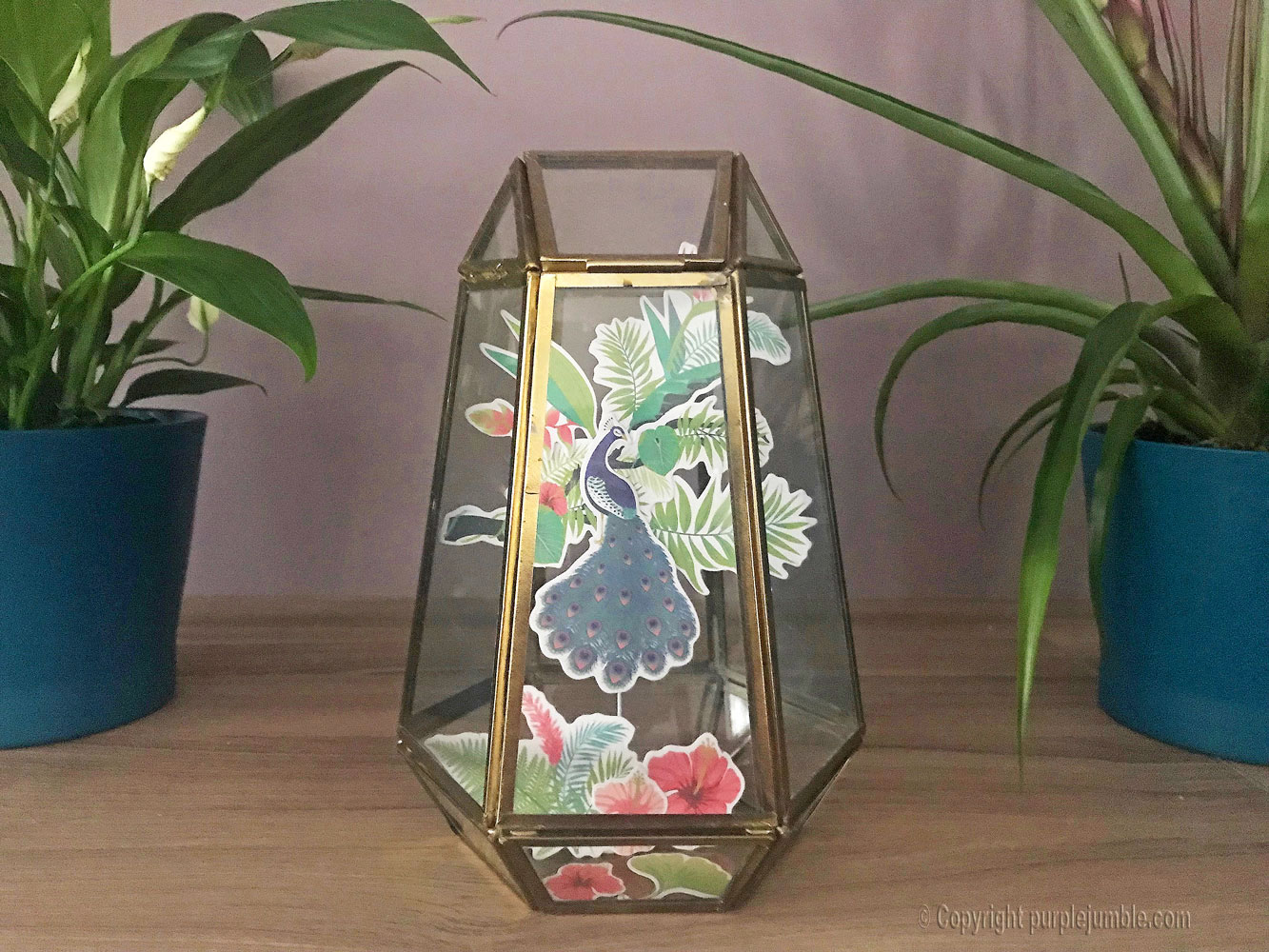 diy vitrine decor papier paon toga composition