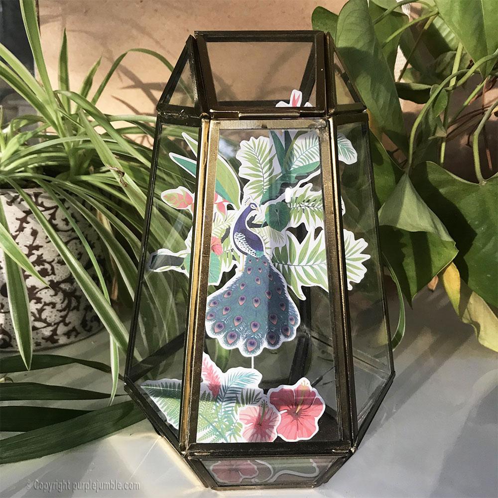diy vitrine decor papier paon toga plantes