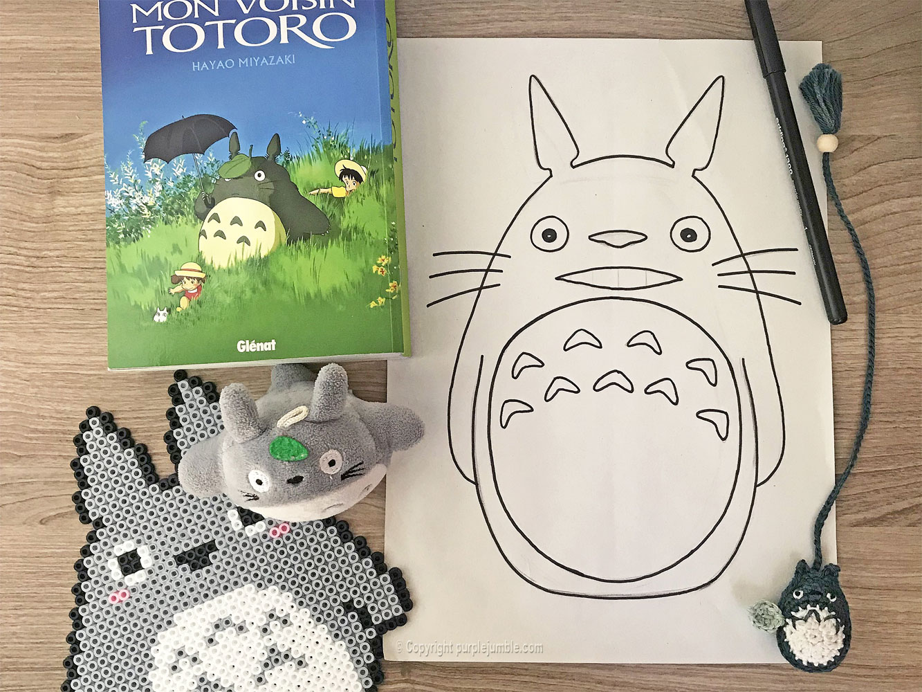 diy coussin punch needle totoro dessin