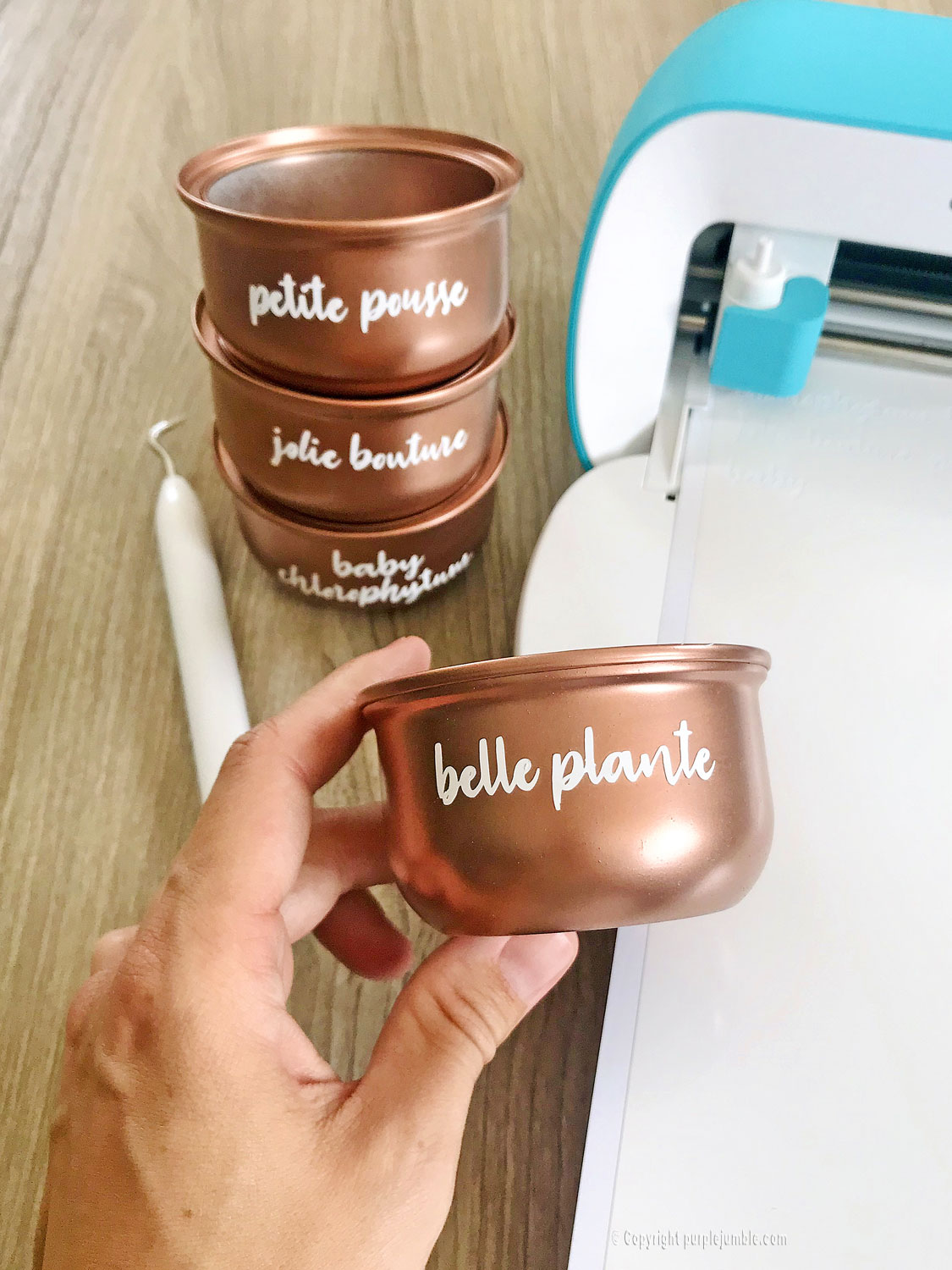 diy pots boutures cricut joy mot