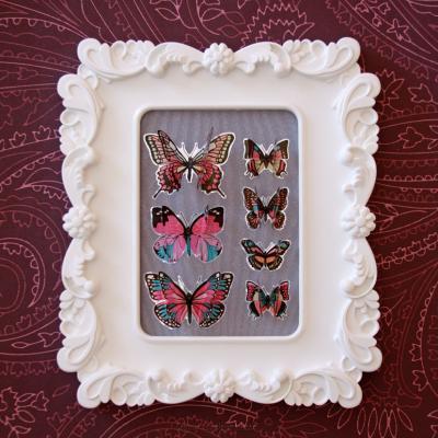 cadre-papillons-10