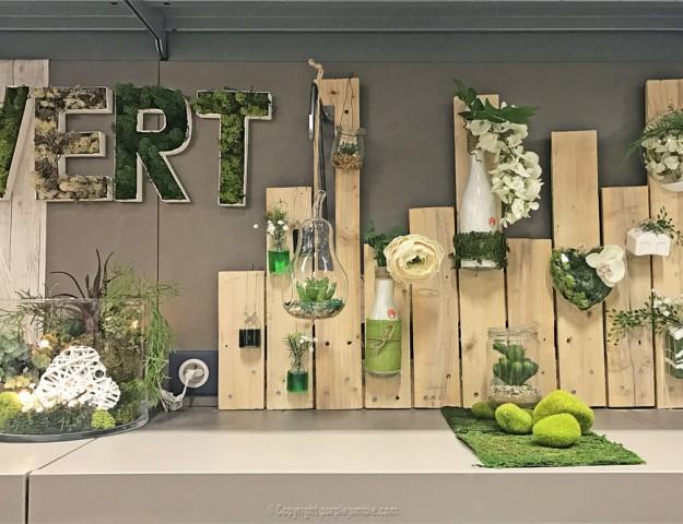 magasin zodio décoration plantes